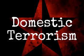 Addressing Domestic Terrorism in America