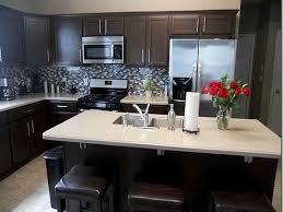 What Color To Paint Kitchen With Dark Cabinets Impressive Design Ideas