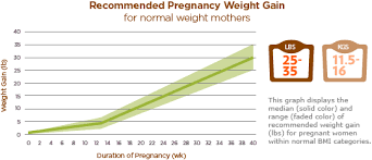 Pregnancy Weight Gain Chart Healthy Weight Gain During Pregnancy