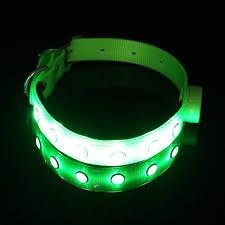 Led Dog Box Lights Pawow Led Dog Collar Keep Your Dog Visible Safe Tpu Flashing Light Up Night Safety Collar For Large Dogs 6 Colors 2 Size