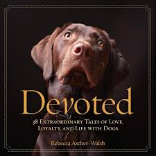 Dog Quotes Love And Loyalty Impressive Devoted 48 Extraordinary Tales Of Love Loyalty And Life With Dogs