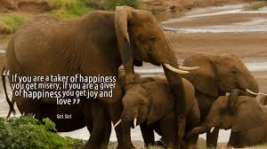 Quotes About Elephants 190 Quotes