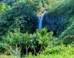 hale akua garden farm eco retreat center at maui hawaii