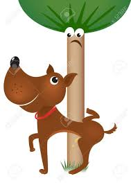 Image result for dogs peeing on a tree