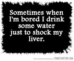 Funny Alcohol Quotes Fascinating Sometimes When I'm Bored The Meta Picture