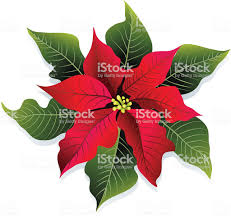 Weihnachten Rote Und Grüne