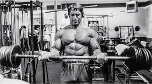 Arnold Exercise Chart Arnold Schwarzenegger Bodybuilding Workout Routine And Diet