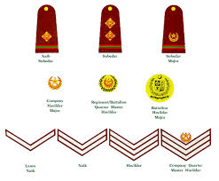 Indian Army Rank Structure Chart Army Rank