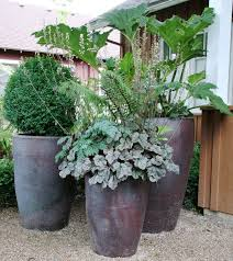 The One Plant Pot Grounded Design By Thomas Rainer Port Max