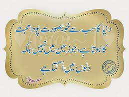 Imam Ali Quotes Islamic Quotes Ali Quotes T