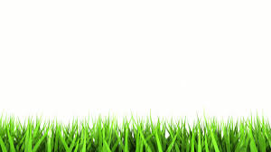 cool green and white backgrounds. Brilliant Green 1920x1080 White Background Wallpaper Inside Cool Green And White Backgrounds A
