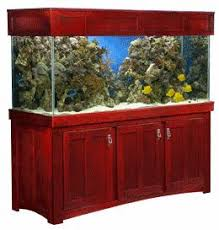 furniture aquarium. acrylic aquariums u0026 glass aquarium furniture exhibit panels