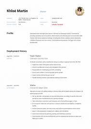 Waitressing Resume Waiter Resume Writing Guide Samples Pdf Head Responsibilities Ex