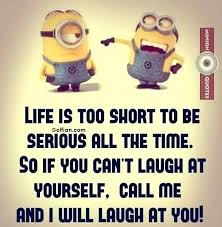 Cute Life Quotes Adorable Cute Life Quotes Stomaplus Best Quotes