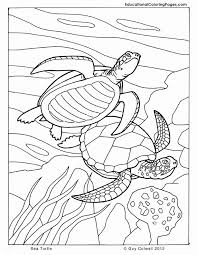 Commercial use is strictly prohibited. Coloring Pages Ocean Animals New Sea Animals Coloring Pages For Kids Coloring Home Meriwer Coloring