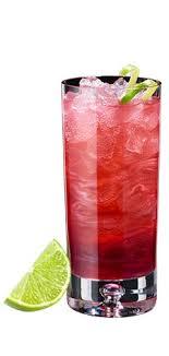 Best 25 Party Drinks Ideas On Pinterest  Hippie Juice Malibu Party Cocktails Vodka