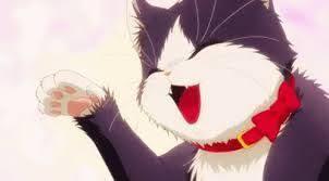 Hd wallpapers and background images. Neko Neko Nee Dance Gif Google Search Anime Stupid Cat Happy Cat