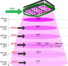 Understanding Grow Light Par Ppfd Wattage And Dli