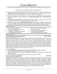 Director Of Operations Resume Download Director Operations Resume