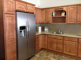 Huge Refrigerator Furniture Cozy Merillat Cabinets Plus Contertop And Sink For
