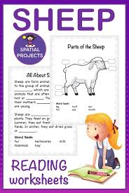 All About Sheep Nonfiction Unit | Text features worksheet ...
