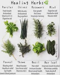 Herb Chart Tumblr