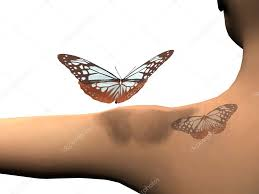 Tetování Motýl 3d
