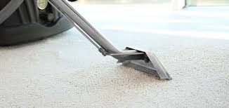 choose us for carpet and area rug cleaning