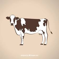 dairy cow silhouette. Brilliant Silhouette Cow Illustration For Dairy Silhouette H