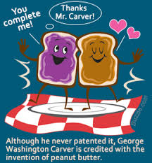 peanut clipart george washington carver pencil and in color  peanut clipart george washington carver 6