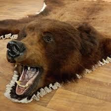 bear head rug brown bear taxidermy rug with mounted head for the taxidermy polar bear rug with head for