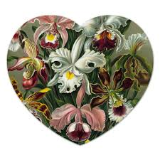 """Коврик для мышки (сердце) """"<b>Орхидеи</b> Эрнста Геккеля"""" #2395873 ..."""