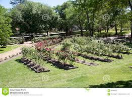 interior of rose garden in tyler texas