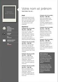 Professional Modern CV Template For Pages | Modern cv template, Cv ...