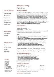 Auditor Job Description Resumes Esthetician Resume Facial Hair Skin Sample Example Job