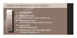 Manuka Honey For Healing Bright Path Collection