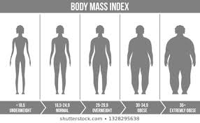 Underweight Normal Overweight Obese Chart