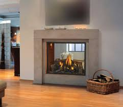 Best 25+ See through fireplace ideas on Pinterest | Double sided ...