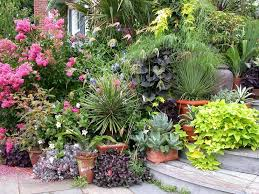 Download Garden Planting Ideas  Solidaria GardenContainer Garden Ideas Uk