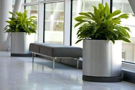 indoor planter staless fish pots australia ceramic planters large . indoor  planter pots large ...