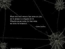 Quotes About Spider Web 52 Quotes