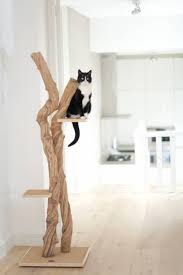 plooking to bring a little nature into your home dutch company chic cat furniture