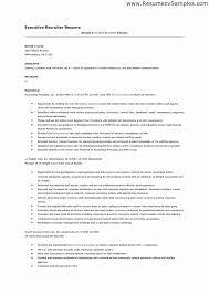 Executive Recruiter Resume Sample Elegant Hr Recruiter Resume