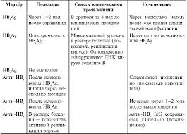 ГЛАВА ОСТРЫЕ ВИРУСНЫЕ ГЕПАТИТЫ Таблица 21 2 Динамика серологических маркёров при остром вирусном гепатите В