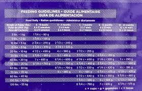 51 Memorable Eukanuba Food Chart