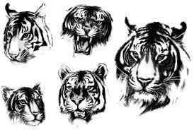 Motiv Tetování Lev Tygr 958