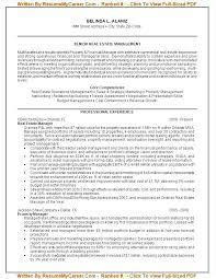 Resume Service Nyc Professional Resume Writer Free Resume Services