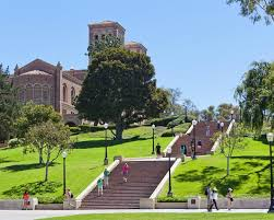 file ucla school of law university of california los angeles ucla school of law find