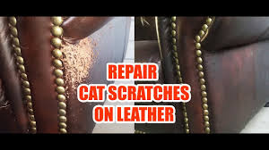 cat scratches leather sofa repair quick easy