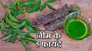 neem benefits in hindi नीम के लाभ by sonia goyal  5 neem benefits in hindi नीम के लाभ by sonia goyal health video 47